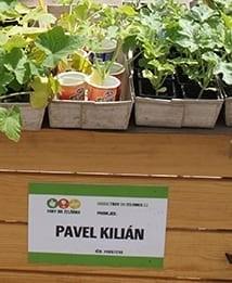 kilian-pavel